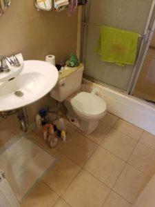 Encino Bathroom